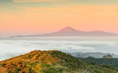 """La Gomera – """"Das Naturjuwel"""""""