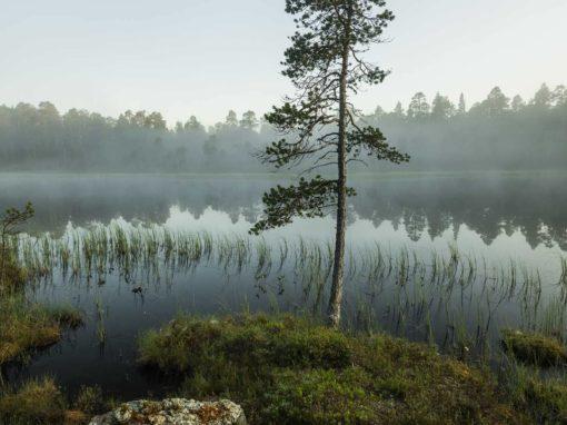 Finnland 19