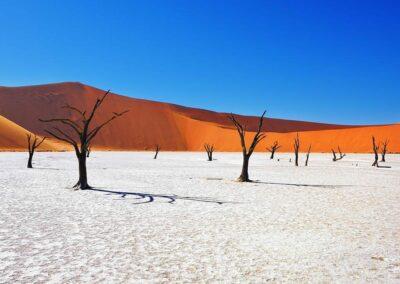 Namibia, Fotoreisen, Life Earth, Philipp Jakesch Photography, Fotoreisen, Fotoworkshops, Touren, Tours, Afrika, Dünen, Wüste, Sossusvlei