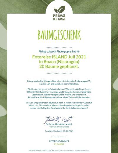 Zertifikat, Baumgeschenk